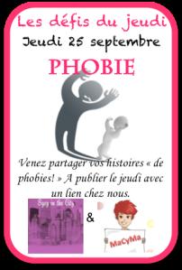 25-09-14-ddj-phobie