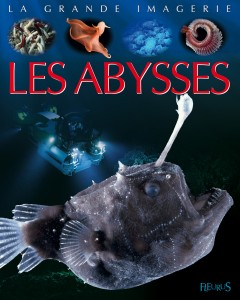 abysses-12939-300-300